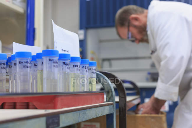 Tubes with samples with working chemist in laboratory. — Stock Photo