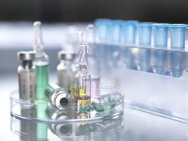 Variety of potential drugs in pharmaceutical vials and test tubes. — Stock Photo
