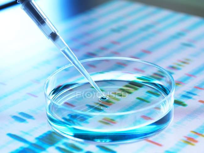 Pipette adding sample to petri dish with DNA autoradiogram in background. — Stock Photo