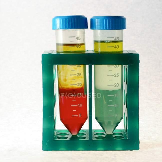 Solutions colorées séparées en liquides constitutifs dans des éprouvettes . — Photo de stock
