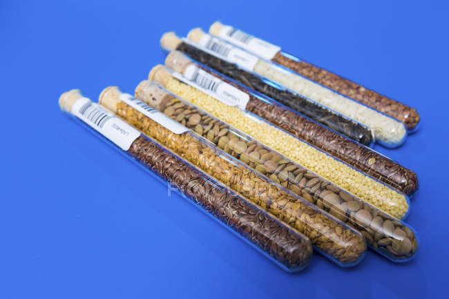 Food samples in test tubes on blue background. — Stock Photo