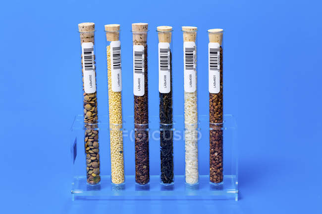 Rack of food samples in test tubes. — Stock Photo