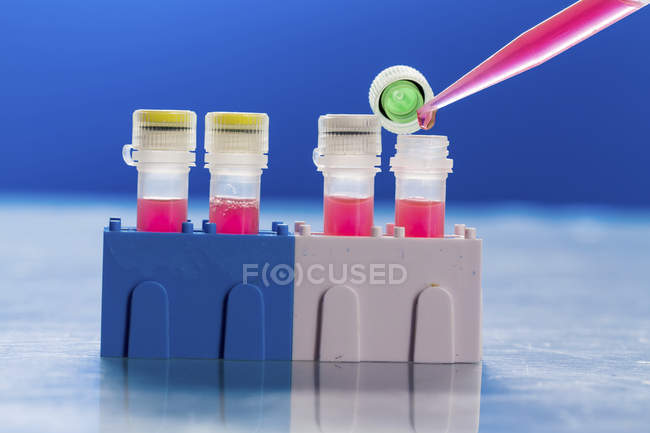 Close-up of pipette pipetting into test tubes in pathogenic laboratory. — Stock Photo