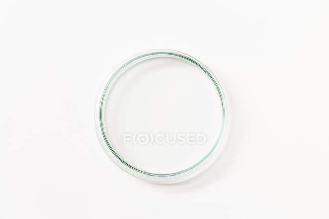 Empty petri dish on white background, top view. — Stock Photo