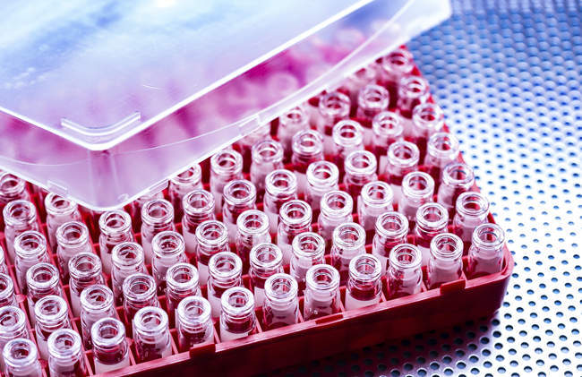 Empty and sterile phials in red plastic box. — Stock Photo