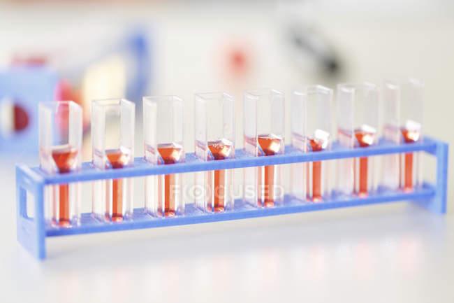Закри стійку клітинних культур в труби в лабораторії. — стокове фото
