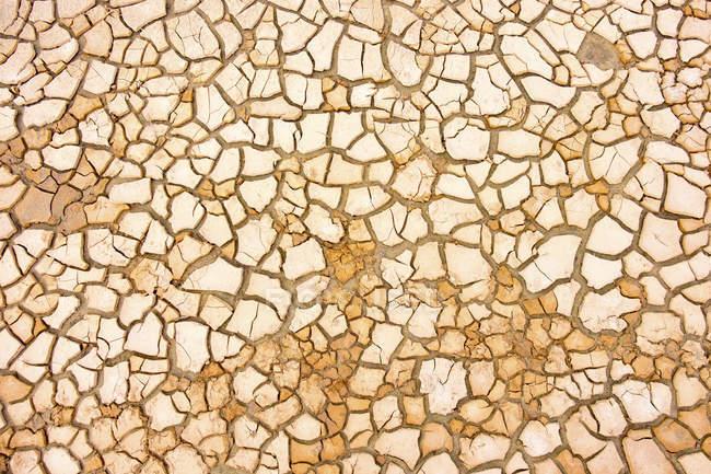 Natural pattern of dry desert soil, full frame. — Stock Photo