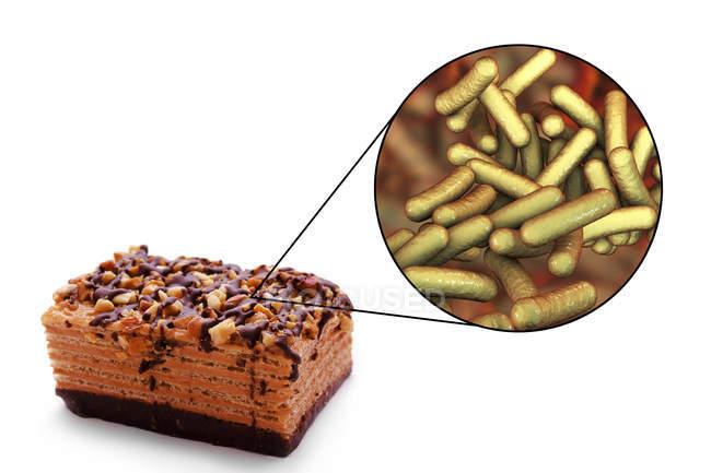 Ilustração conceitual da infecção alimentar com pedaço de bolo e close-up de bactérias Shigella . — Fotografia de Stock