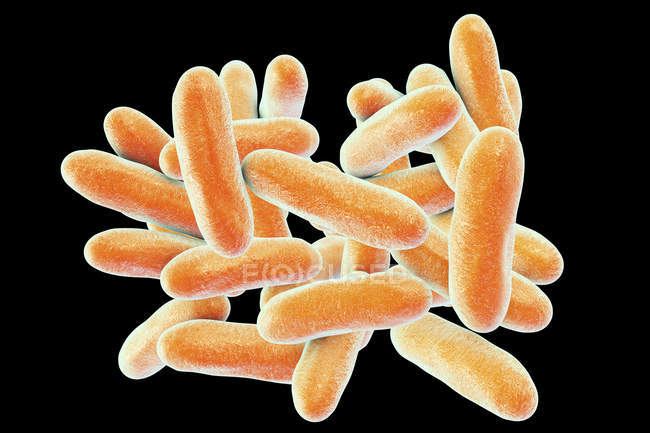 Digital illustration of Legionella pneumophila bacteria causing Legionnaires disease. — Stock Photo
