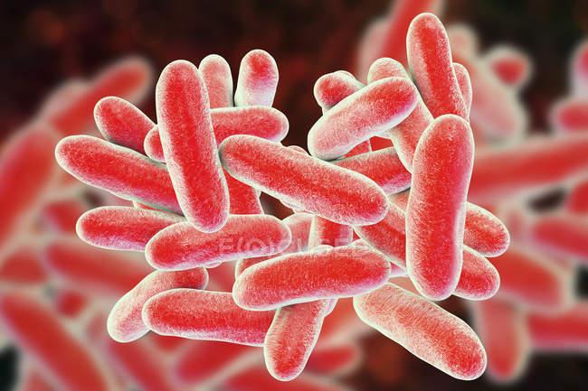 Ilustração digital das bactérias Legionella pneumophila causadoras da doença de Legionários . — Fotografia de Stock