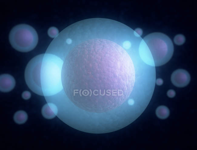 Digital artwork of round transparent cells on plain background. — Stock Photo
