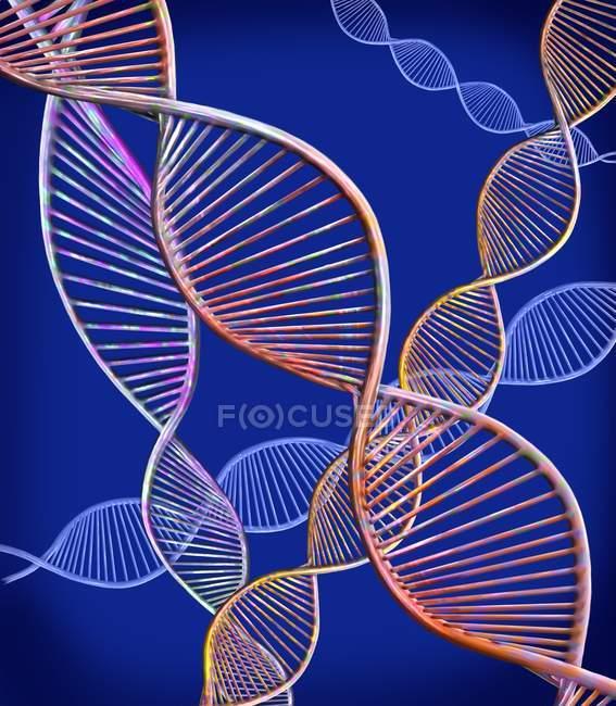 Ilustración digital que muestra la estructura de moléculas de ADN de doble cadena . - foto de stock