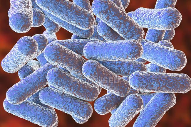 Farbige stäbchenförmige Morganella-Bakterien, digitale Illustration. — Stockfoto