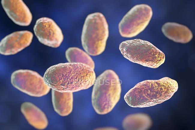 Obra digital de bacterias Yersinia enterocolitica en forma de varilla de colores . — Stock Photo