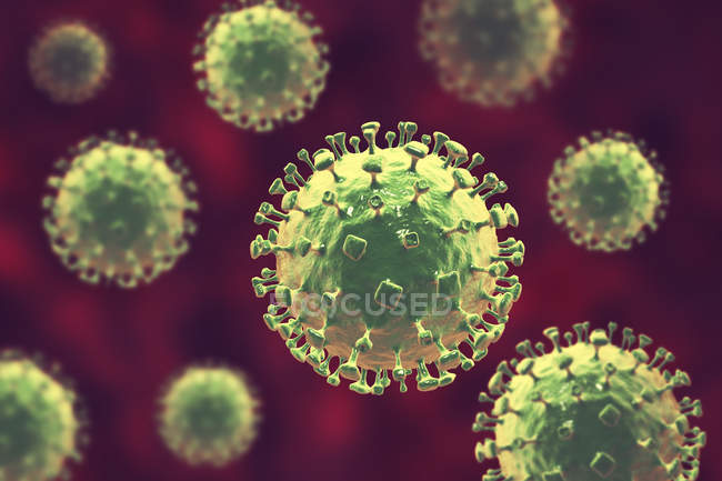 Particules de virus Nipah, illustration numérique . — Photo de stock
