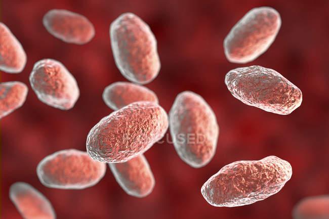 Opera d'arte digitale di batteri colorati a forma di bacchetta Yersinia enterocolitica . — Foto stock