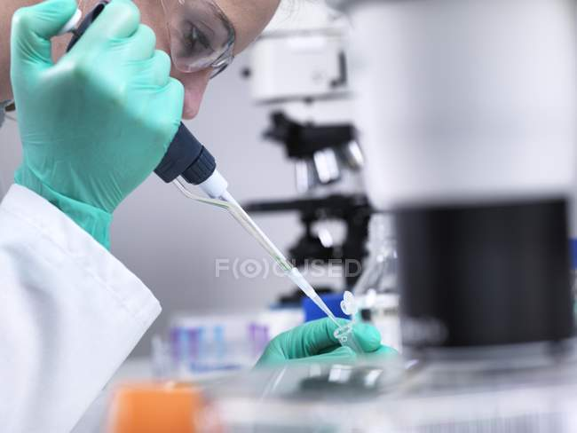 Laboratory worker pipetting liquid into microcentrifuge tube. — Stock Photo