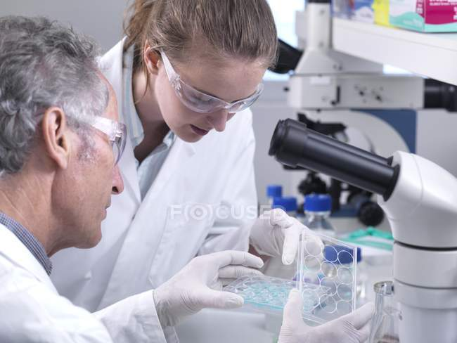 Scientists holding multiwell plate with chemical solution for analytical testing in laboratory. — Stock Photo