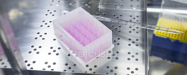 Клітинка, підставі тестування комплект в біоінженерії лабораторії. — стокове фото