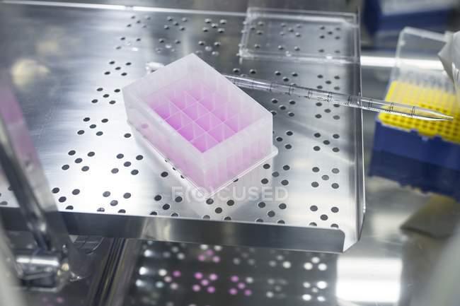 Testkit auf Zellbasis im Labor für Biotechnologie. — Stockfoto