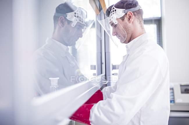 Technicien de laboratoire utilisant une hotte laminaire, des gants épais et un écran facial tout en travaillant avec des produits chimiques dangereux . — Photo de stock