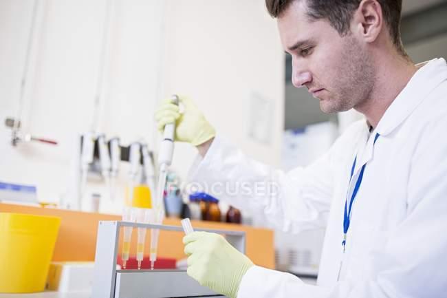 Técnico pipetagem amostras em cartuchos para extração de fase sólida . — Fotografia de Stock
