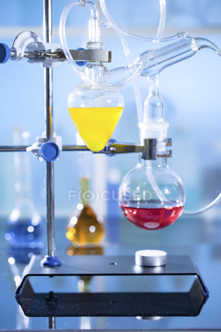 Colorful liquids in laboratory glassware while chemistry experiment. — Stock Photo