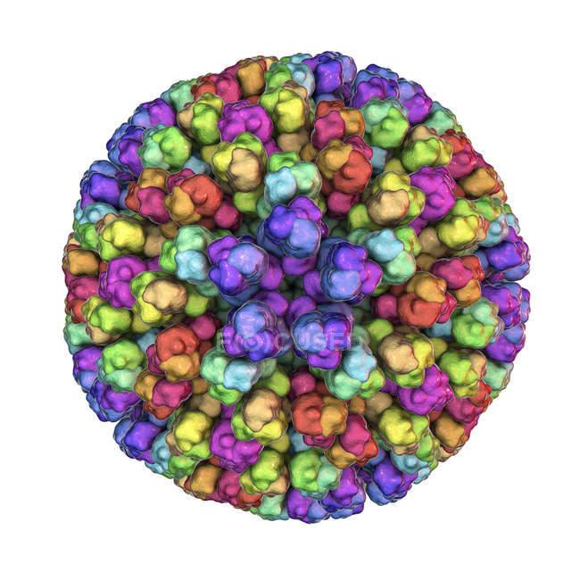 Цифровая Иллюстрация основных частицы вируса блютанга с белками, представлены цветные капли. — стоковое фото