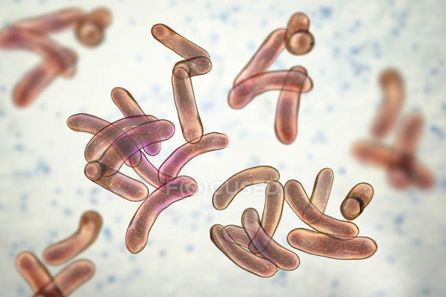 Group of flagella cholera bacteria, digital illustration. — Stock Photo