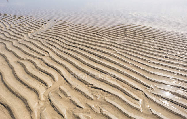 Natural pattern of ripples on sand in arid desert. — Stock Photo