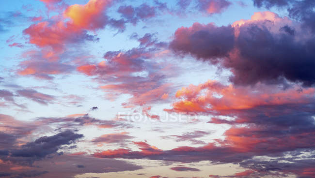 Pink clouds in blue sky at sunset. — Stock Photo