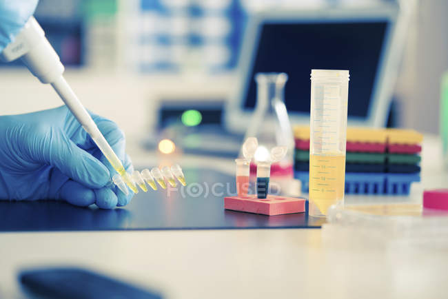 Close-up of pipetting sample into plastic micro-centrifuge tube rack. — Stock Photo