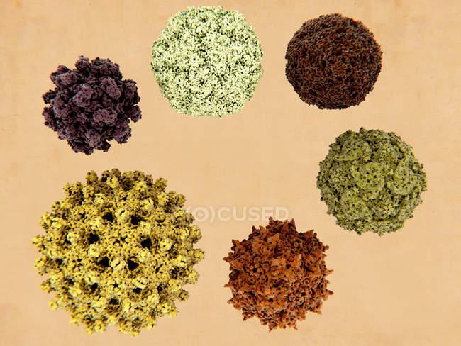Particules virales pathogènes d'origine humaine, illustration . — Photo de stock