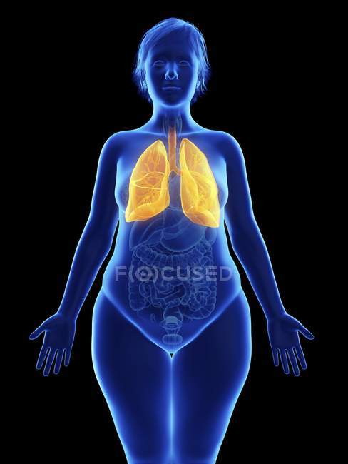 Illustrazione frontale di silhouette blu di donna obesa con polmoni evidenziati su sfondo nero . — Foto stock