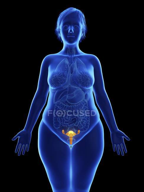 Frontal illustration of blue silhouette of obese woman with highlighted uterus on black background. — Stock Photo