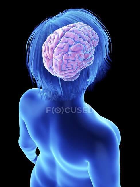 Ilustración sobre negro de silueta de mujer obesa con cerebro resaltado . - foto de stock