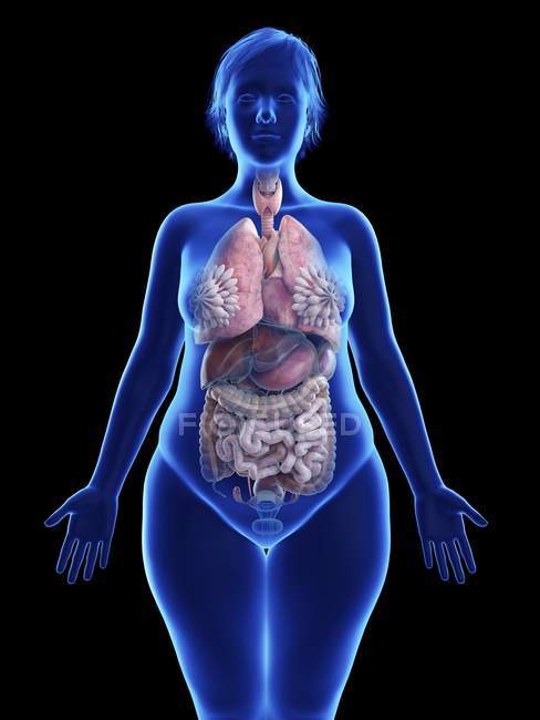 Illustration on black of silhouette of obese woman with highlighted internal organs. — Stock Photo