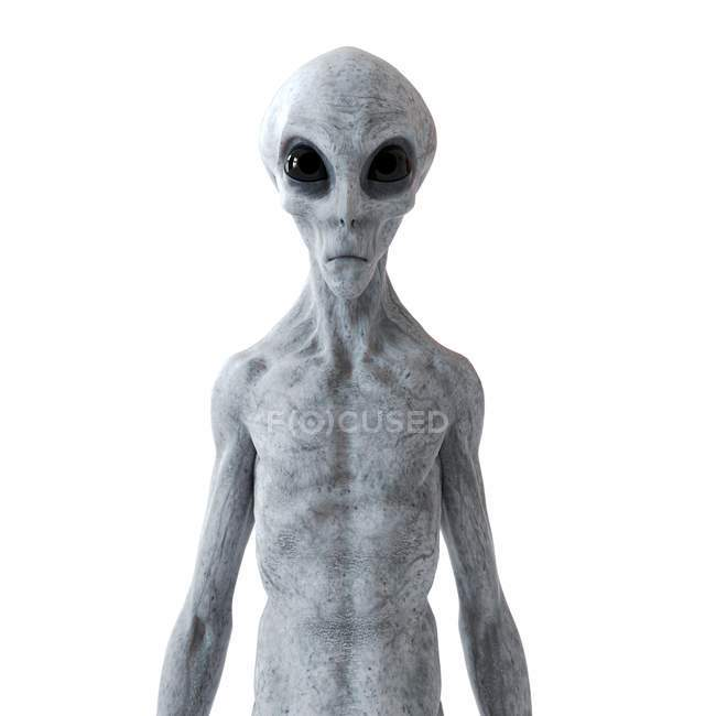 Illustration of gray humanoid alien on white background. — Stock Photo