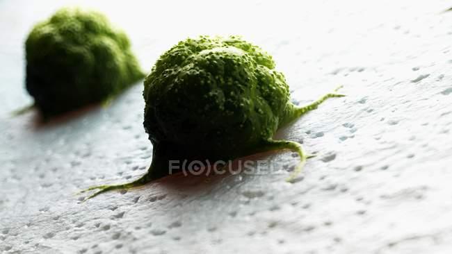 Ilustração digital de células cancerígenas verdes . — Fotografia de Stock