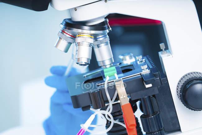 Gros plan d'un scientifique utilisant un laboratoire sur un microscope à puce . — Photo de stock