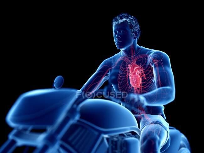 3d renderizado ilustración del corazón del motorista sobre fondo negro . - foto de stock