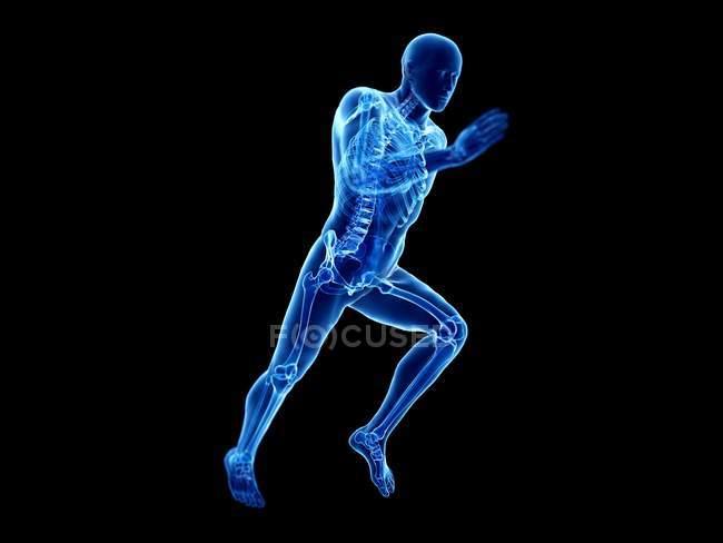 3d rendering illustrazione di scheletro in silhouette corpo jogger su sfondo nero . — Foto stock