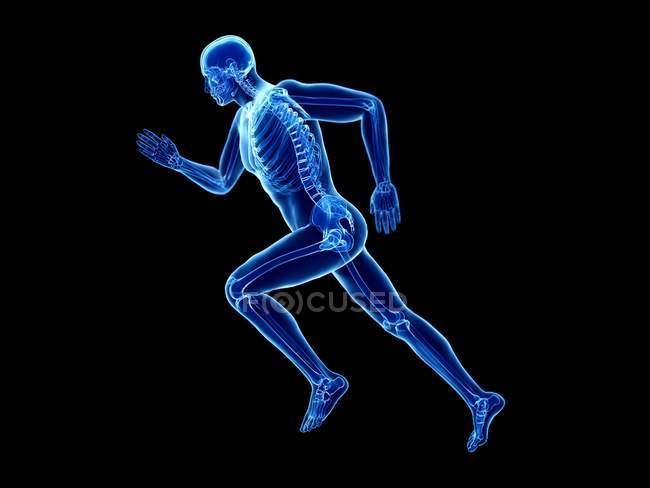 3d renderizado ilustración de esqueleto en cuerpo jogger silueta sobre fondo negro . - foto de stock