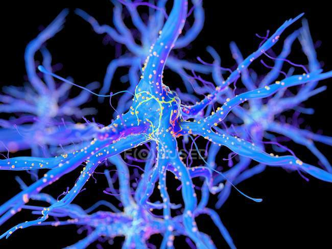 3d renderizado ilustración de la célula nerviosa púrpura . - foto de stock
