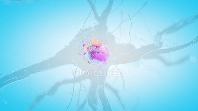 Illustration en 3D de cellules nerveuses humaines sur fond bleu . — Photo de stock