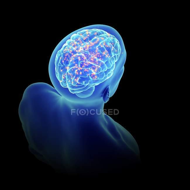 3d representó la ilustración del cerebro activo en la silueta humana . - foto de stock
