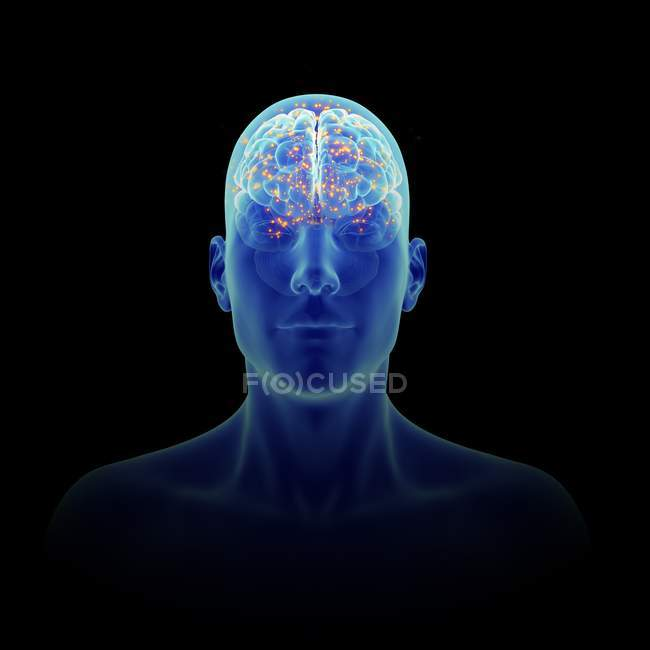 Illustrazione 3D del cervello attivo nella silhouette umana . — Foto stock