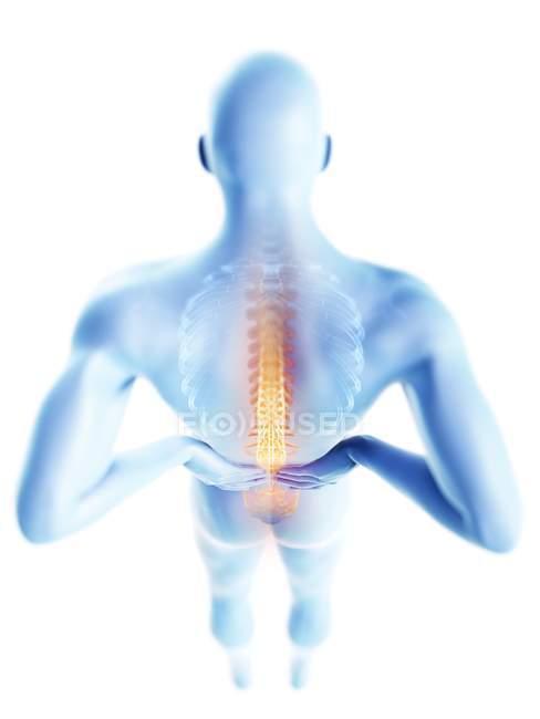 3d renderizado ilustración de silueta azul del hombre con dolor de espalda . - foto de stock