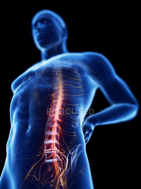 Vista de ángulo bajo ilustración de la silueta azul del hombre con dolor de espalda . - foto de stock