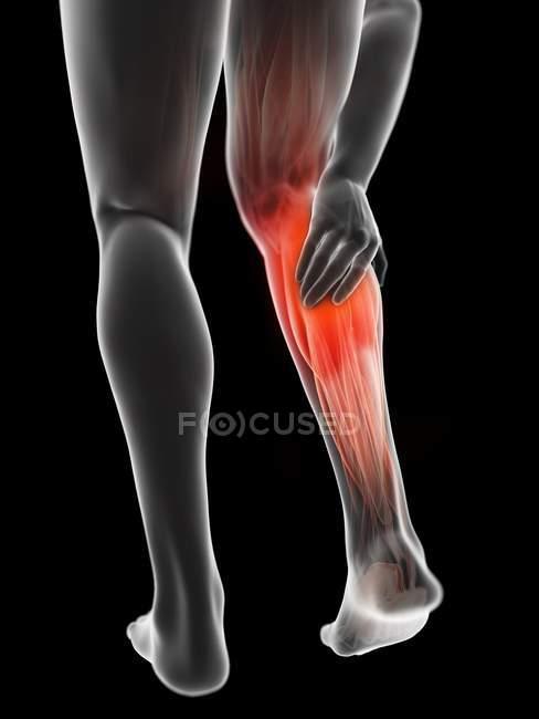 3d ilustración renderizada de silueta gris de las piernas masculinas con doloroso becerro sobre fondo negro . - foto de stock